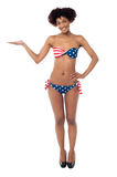USA flag bikini model presenting copy space Stock Photography