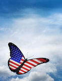 USA flag butterfly Stock Photography