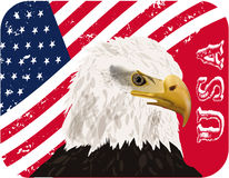 Usa flag, eagle, eps10 vector illustration