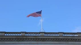 USA Flag stock video