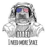 Usa flag glasses American flag United states flag Hippo, Hippopotamus, behemoth, river-horse wearing space suit Wild Royalty Free Stock Photo