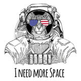 Usa flag glasses American flag United states flag Oriental cat with big ears wearing space suit Wild animal astronaut Stock Image