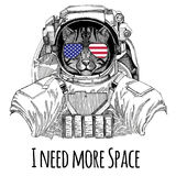 Usa flag glasses American flag United states flag Wild cat Fishing cat wearing space suit Wild animal astronaut Spaceman Stock Image