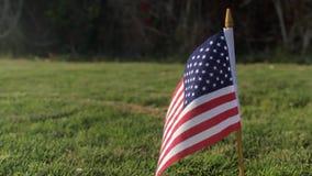 USA flag on green grass. American Flag