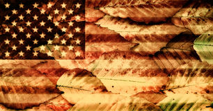 USA Flag over Beech Leaves Stock Photos