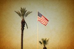 USA flag with palm trees. Vintage grunge image Royalty Free Stock Images