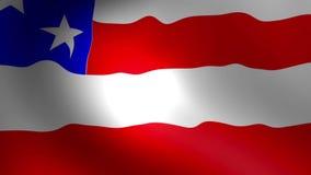 USA Flag waving Stock Images