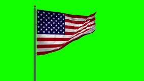 USA flag waving 3d animated stock footage