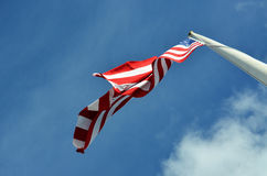 USA flaga Obraz Stock