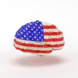 USA flaga na ludzkim mózg Zdjęcia Stock