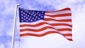 USA flagga som vinkar i vinden stock video