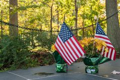 USA-flaggor på Arlington den nationella kyrkogården royaltyfri fotografi