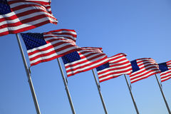 USA Flags Stock Image