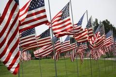 USA flags Stock Image
