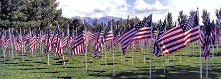 Panaroma  of USA Flags On Display, Salt Lake City Utah stock image