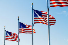 USA flags Stock Photography