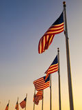 USA Flags In The Washington Monument Royalty Free Stock Photos