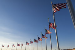USA Flags. Waving flags surrounding washington monument Stock Images