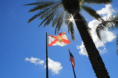 USA and Florida flags against the light Royalty Free Stock Photography