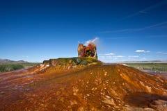 USA - Geysir Stockbild