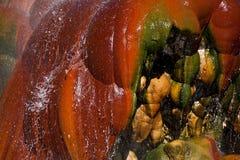 USA - Geysir Stockbilder