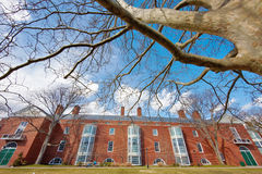 06.04.2011, USA, Harvard University, Aldrich. Panorama, bottom view, sunny day, clouds, trees on the top Royalty Free Stock Image