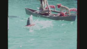 Dolphins Dancing Hula In The Water. USA, HAWAII, HONOLULU, APRIL 1977. Two Shot Sequence Of Two Dolphins Wearing A Floral Wreath Dancing Hula And Two Others stock footage