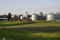 USA_IAWA rolnictwo obrazy stock