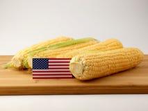 USA kennzeichnen auf einer Holzverkleidung mit dem Mais, der auf einem weißen backgro lokalisiert wird Lizenzfreie Stockfotografie