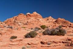 USA - Kojote Buttes - die Wellenbildung Stockbild