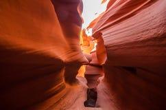 USA krajobraz, Uroczysty jar Arizona, Utah, Zlani stany America Obrazy Stock