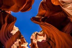 USA krajobraz, Uroczysty jar Arizona, Utah, Zlani stany America Obraz Stock