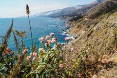 USA - Kust- linje för Big Sur arkivbilder