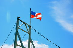 USA lag blowing near the coast of Maine. A little bird is sitting next to the USA flag in Maine blowing in the wind Stock Photos
