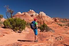 USA - Mann im entspannenden Park Kojote Buttes - die Welle Lizenzfreie Stockfotografie