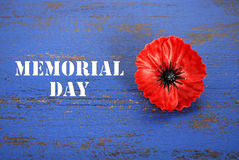 USA Memorial Day concept. USA Memorial Day concept of red remembrance poppy on dark blue vintage distressed wood table, with title text Stock Photos