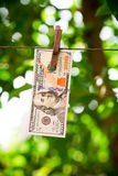 USA money, Dollar bills hanging on rope attached with clothes p Stock Photo