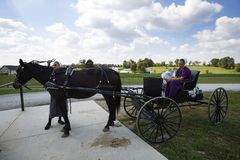 USA - Ohio - Amische Stockbild