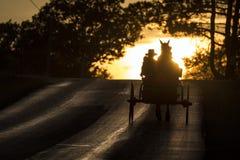 USA - Ohio - Amische Lizenzfreie Stockbilder