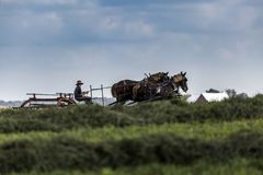 USA - Ohio - Amish Royaltyfri Bild
