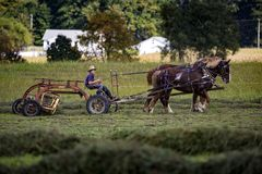 USA - Ohio - Amish stock images