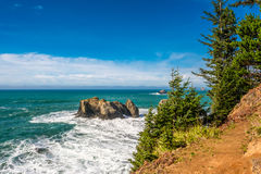 USA Pacific coast landscape, Oregon Royalty Free Stock Photos