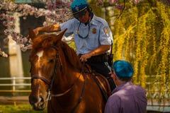 USA parkerar polisen på Jefferson Memorial Arkivbild