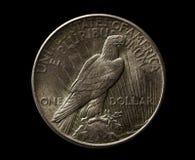 USA-silver 1925 år dollar med örnen som isoleras på svart Arkivbild