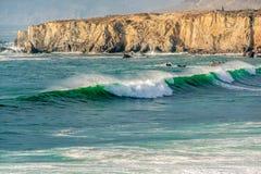 USA Stillahavskusten, strand för sanddollar, stora Sur, Kalifornien Arkivfoto