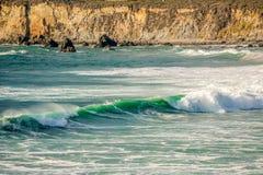 USA Stillahavskusten, strand för sanddollar, stora Sur, Kalifornien Royaltyfri Bild