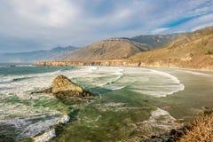 USA Stillahavskusten, strand för sanddollar, stora Sur, Kalifornien Royaltyfria Bilder