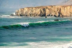 USA Stillahavskusten, strand för sanddollar, stora Sur, Kalifornien Royaltyfri Fotografi