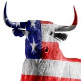USA tjur Arkivfoto