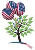 Usa tree Stock Image